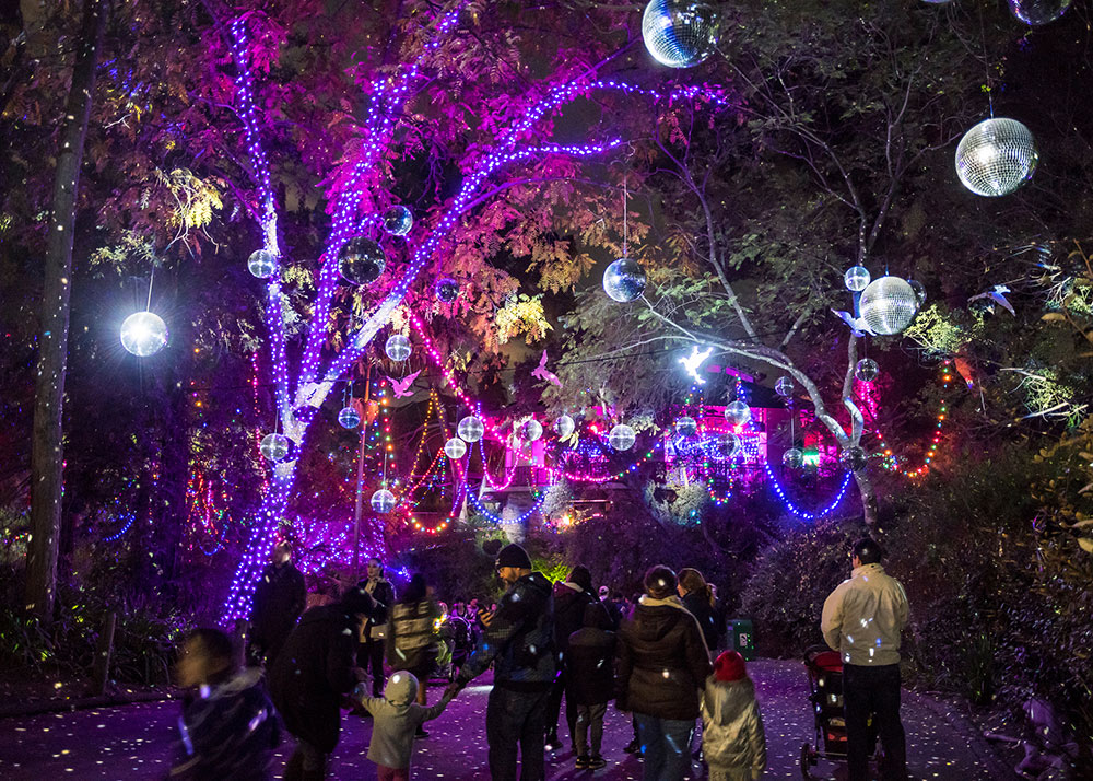 Lights and disco balls at L.A. Zoo Lights