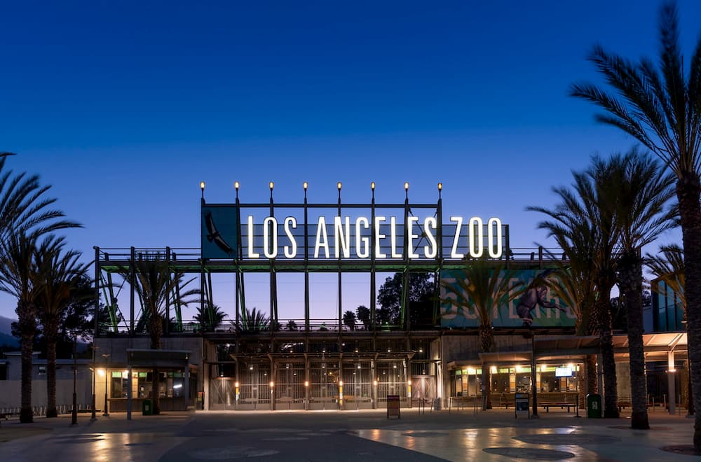 Statement from the Los Angeles Zoo on Social and Racial Justice, Inclusion, and Equity