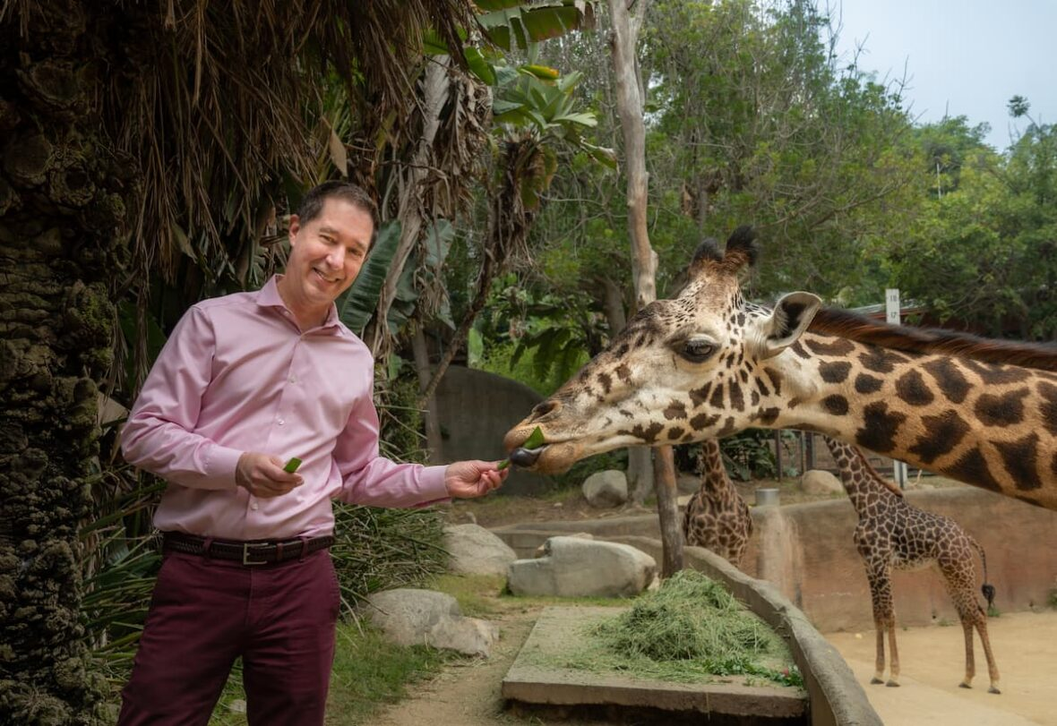 Zoo Update with Tom Jacobson, GLAZA President