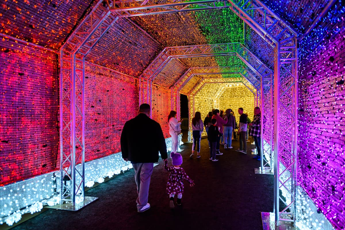 Silhouettes of people walking through a tunnel of rainbow of lights